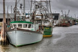 Jersey Shore Photos - Belford
