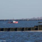 Jersey Shore Photos - Bayshore Waterfront Park (3)